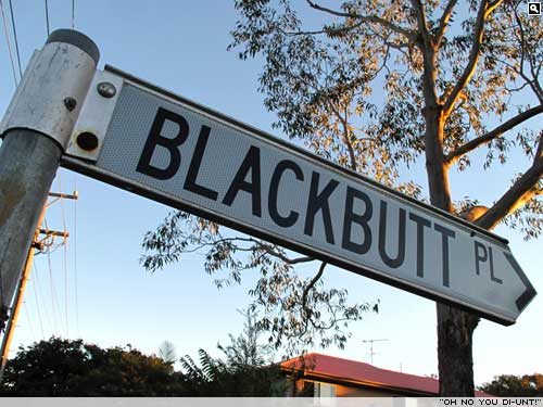 Black Butts live here